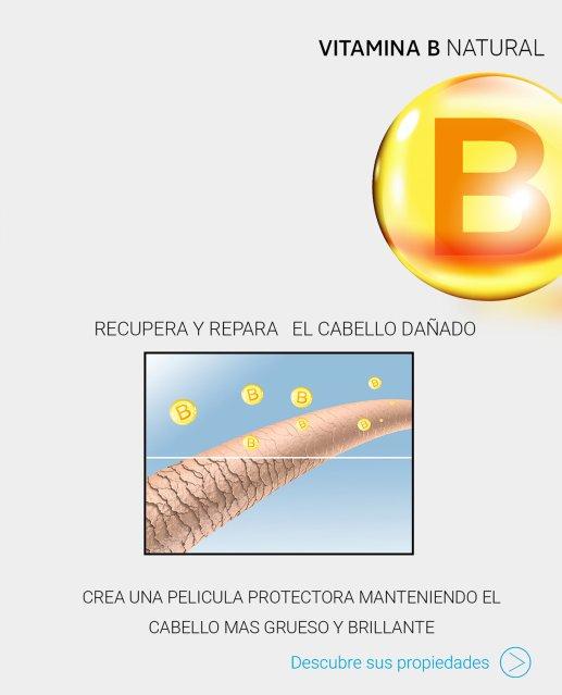 efectos-de-la-vitamina-b-en-la-ca_C3_ADd