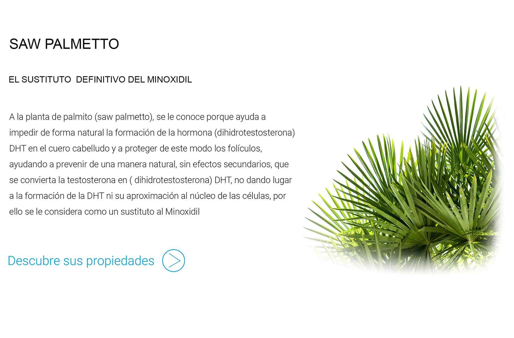 saw-palmetto-sustitutivo-minoxidil.jpg